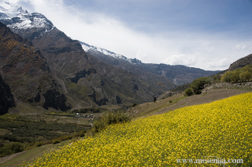 Paisatge a la carretera de Manali a Leh