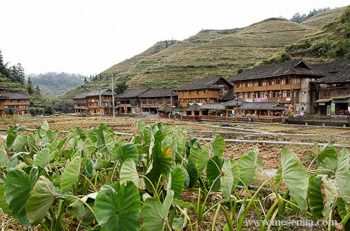Dazhai, poble rural a Xina